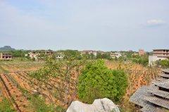 上饶市友邦农林业综合开发有限公司